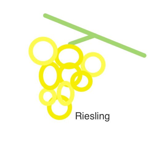 Selection of our wines with Riesling