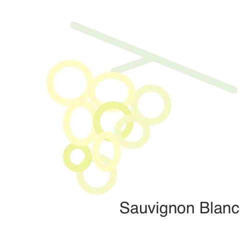 Selectie van onze wijnen met de sauvignon blanc druif