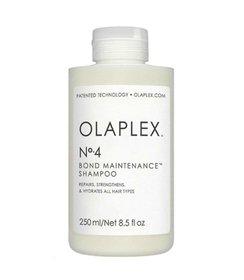 Maintenance Shampoo No.4