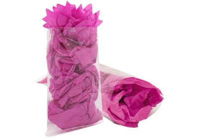 Plastic zakje transparant PP verpakt á 1000 stuks