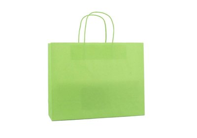 Papieren twisted draagtas + bodemkarton Groen  liggend model