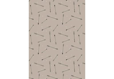 Kadopapier 30/50 cm 200 meter Arrows Coated paper
