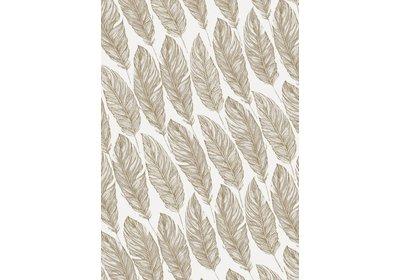 Kadopapier 30/50 cm 200 meter Feather Coated paper