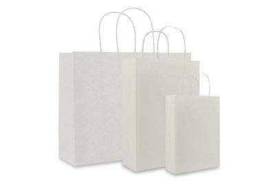 Papieren twisted draagtas + bodemkarton Wit