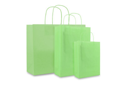 Papieren twisted draagtas + bodemkarton Groen
