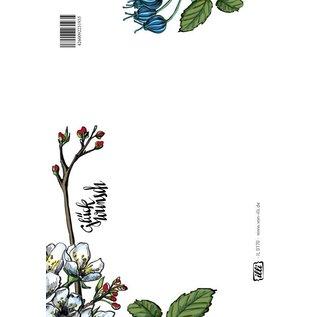 IL0170 | illi | Congratulation 1 - postcard A6