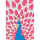 lu021   luminous   Peacock - postcard A6