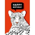 IL0198 | illi | Kimbu - Happy Birthday - postcard A6