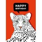 IL0198 | illi | Kimbu - Happy Birthday - Postkarte A6
