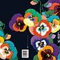 IL9057   illi   Viola - Congratulations - double card B6