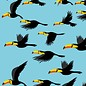 Druck A4 - Flying Tucan
