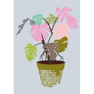 Druck A4 - Zimmerblattpflanze
