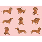 bf016 | best friends | Many Dachshunds - postcard A6