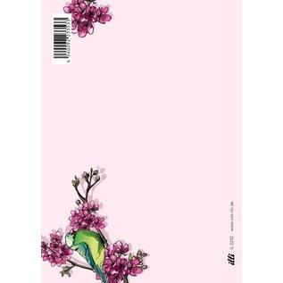 Postkarte - NOBI
