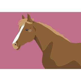 bf003   Postkarte - Pferd