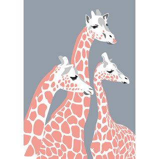 bf010   Postkarte - Giraffen