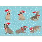 ccx011 | Postkarte - Hunde mit Nikolausmütze