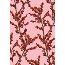Wrapping Paper Nevo Rosa