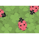 lu111 | luminous | lady bug - Postkarte A6