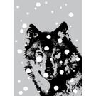 ff08709   Postkarte -Wolf im Schnee