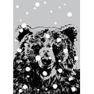 ff08710 | freshfish | Bär im Schnee   - Postkarte A6