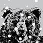 ff08710   freshfish   Bear In Snow - postcard A6
