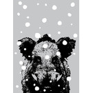 ff08711 | freshfish | Boar In Snow - postcard A6
