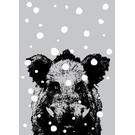 ff08711 | freshfish | Eber im Schnee    - Postkarte A6