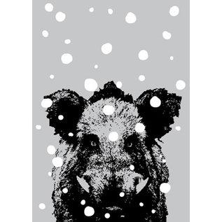 ff08711   freshfish   Boar In Snow - postcard A6