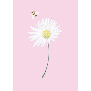 mi017 | m-illu | Daisy - postcard A7