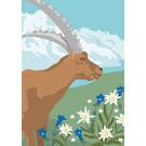 cc178 | Postkarte - Spring Aries