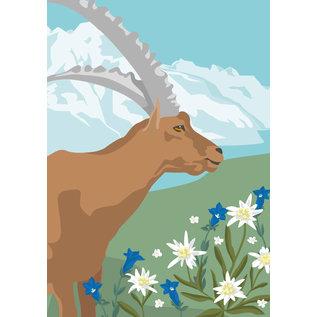 cc178 | Postcard  - Spring Aries