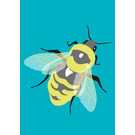 lu205 | Postcard  - bumblebee
