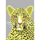 lu206 | Postcard  - Leopard