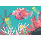 lu213 | Postkarte  - Zebrafisch