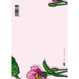 IL0247 | illi | Primula  - PostCard A6