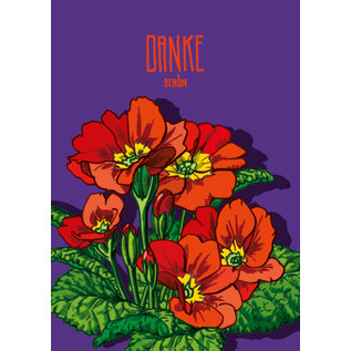 IL0248   illi   Primula  - Dankeschön -  Postkarte A6