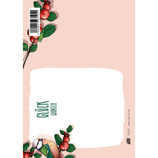 IL0259   illi   Pimpo - Postkarte A6