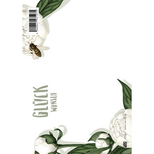 IL0261 | illi | Peoni Glückwunsch - Postkarte A6