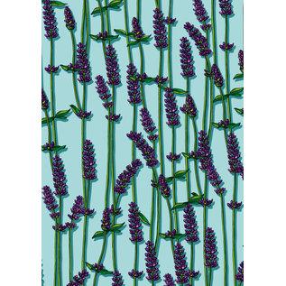 il7046   illi    Lavendel - Geschenkpapier Bogen 50 x 70 cm