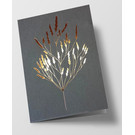 pu094 | Pure | grasses -anthracite - folding card  C6