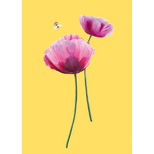 mi026 | m-illu | Pink Poppy-  postcard A6