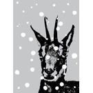 ff08507 | freshfish | Chamois In Snow - postcard A6