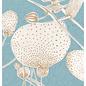sg206   schönegrüsse   Anemone- Postkarte A6