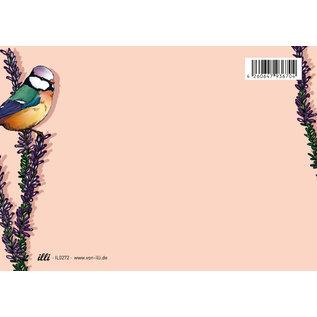 IL0272   illi   Heido - Postkarte A6