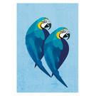 di013 | Daria Ivanovna | Parrots