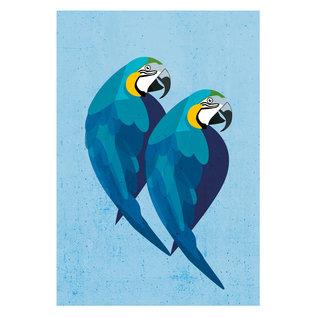 di013 | Daria Ivanovna | Parrots - postcard A6