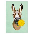 di015 | Daria Ivanovna | Donkey