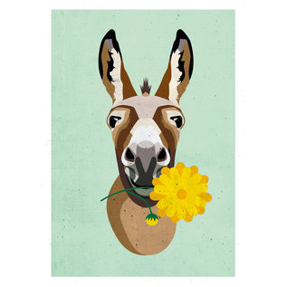 di015 | Daria Ivanovna | Donkey - postcard A6