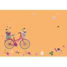 mi652 | m-illu | Fahrrad Blumen - Briefumschlag Set C6